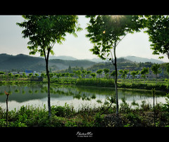 Fishing Pond - Zhejiang (Rural China Series) (Andy Brandl (PhotonMix.com)) Tags: trees lake mountains landscape outdoors nikon day vegetation fishingpond ruralchina directlight photonmix andybrandl