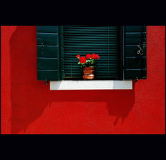 - (klaus53) Tags: flowers venice red window colors nikon venezia colori burano colorphotoaward saariysqualitypictures absoluterouge
