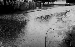 Flaming June, Glasgow (nearthecastle) Tags: uk summer blackandwhite wet monochrome rain june puddle scotland blackwhite glasgow raining puddles flamingjune thedailypost