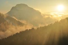 Final del dia (inami_13) Tags: sunset naturaleza sun sol nature fog backlight contraluz atardecer luces natura puesta niebla posta llums contrallum boira