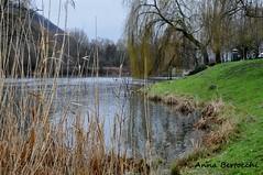 il fiume d'inverno (anna bertocchi) Tags: italy tree nature water landscape outdoors nikon europa paesaggio d90 infinitexposure