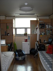 Room 505 al Globeedorm