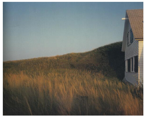 Joel Meyerowitz: Dune Grass