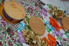Dinner (GirlOnAMission) Tags: summer food robin 4thofjuly 2009 psu