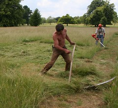 Beaten by William knight 2009 (sadeik) Tags: uk competition eastern cambridgeshire counties scythe wimpole scything