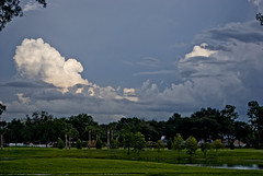 park and clouds (be my butterfly) Tags: park summer sky storm nature clouds orlando florida cumulus tropical thunderhead cumuluscongestus