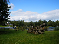 Walking in Aughrim (St.Stello) Tags: ireland pinky aughrim cowicklow