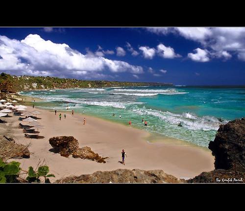 להציל את חוף הים 3810525379_8cc95d15e2