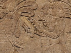 BM_ANE354 (sipazigaltumu) Tags: london museum ancient near antique east bm british mesopotamia basrelief reliefs assyrian antiquit ashurnasirpal antiquite ashurbanipal assurbanipal orthostat assurnasirpal orthostate tiglathpilesar tiglatpilesar tiglatpileser