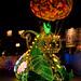 Disneyland August 2009 049