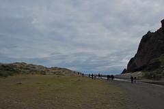 Karekare Beach (mr starbuck) Tags: newzealand karekarebeach
