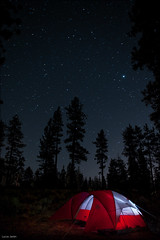 Camping with the stars (Lucas Janin | www.lucasjanin.com) Tags: california longexposure blue camping light red sky usa plant color tree night plante iso800 star nikon outdoor lumire tent explore ciel getty 24mm nikkor campground insomnia nuit f28 gettyimages lightroom tente sanbernardinocounty longueexposition insomnie nikond700 lucasjanin afsnikkor2470mmf28ged 600sec