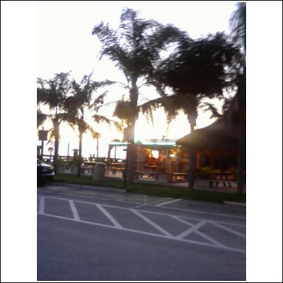 Willy J's, Pine Island, Hernando County, Florida