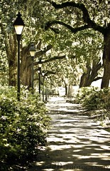 Forsyth Park. Savannah, Georgia (HisPhotographs.com) Tags: trees light green lamp canon ga georgia square is site big oak long downtown azaleas post path historic walkway lonely savannah ef sav 70200mm f28l 50d