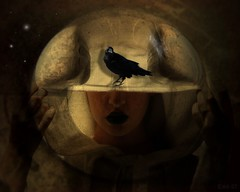 beauty of twilight (Eddi van W.) Tags: beauty twilight gothic raven transreal marcusranum graphicmaster