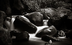 Slippery (The Lost American In America) Tags: bw usa white black love nature water beauty leaves oregon america milk rocks soft long exposure shot nathan weekend falls special honey land slippery silky naturally kellum thelostamericaninfrance