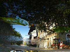 Reflections Of Amsterdam - kroY weN ♥ I (AmsterSam - The Wicked Reflectah) Tags: autumn holland reflection water netherlands amsterdam bike puddle europe wicked nophotoshop lifeisgood 2009 carpediem unedited waterreflections amstelhotel stadsarchief amstersam reflectah panasonicdmcfz8 amsterdamthebestcityintheworld reflectionsofamsterdam checkoutmywebsitewwwamstersamcom wickedreflections puddlepictures thewickedreflectah amstersmthewickedreflectah
