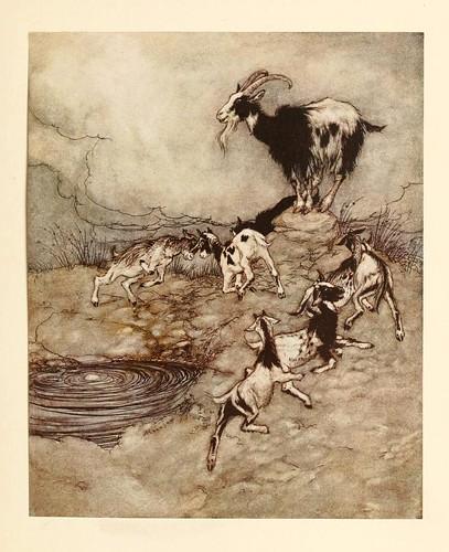 015-El lobo y los siete cabritos- Snowdrop & other tales 1920- Grimm-Ilustrada por Rackham