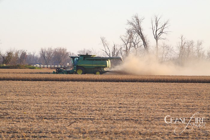 11-10-crops3