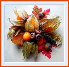 NOVEMBER NOSEGAY..... (Purple satin bowerbird back on and off) Tags: november red orange green leaves oak corn berries bouquet acorns physalis nosegay
