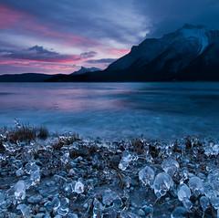 Ice Flowers of Abraham Lake (Marc Shandro) Tags: ca winter sunset lake canada motion mountains ice nature sunrise landscape alberta wilderness tranquil abrahamlake iceformations mountmichener davidthompsonhwy