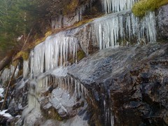 Icicles on Trillium Gap Trail