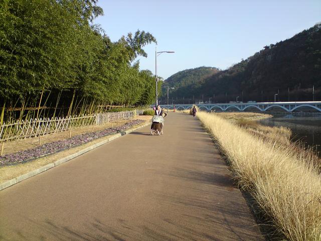 십리 대밭길 옆의 강변 산책로