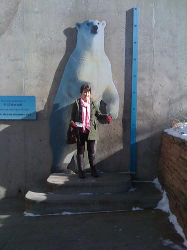 1/2 Polar Bear