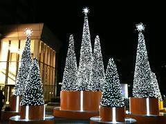 09クリスマス:代官山アドレス
