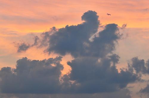 Tonight's Evening Sky