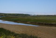 Pescadero Marsh Preserve (dbaron) Tags: california bridge usa geotagged highway1 marsh preserve pescadero californiastateroute1 stateroute1 pescaderomarshpreserve geo:lat=37259035 geo:lon=122404860