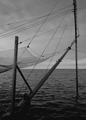 rete (krk_eye) Tags: rete diga sottomarina