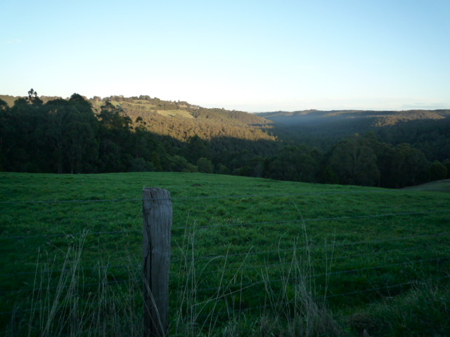 Mount Baw Baw Tourist Road
