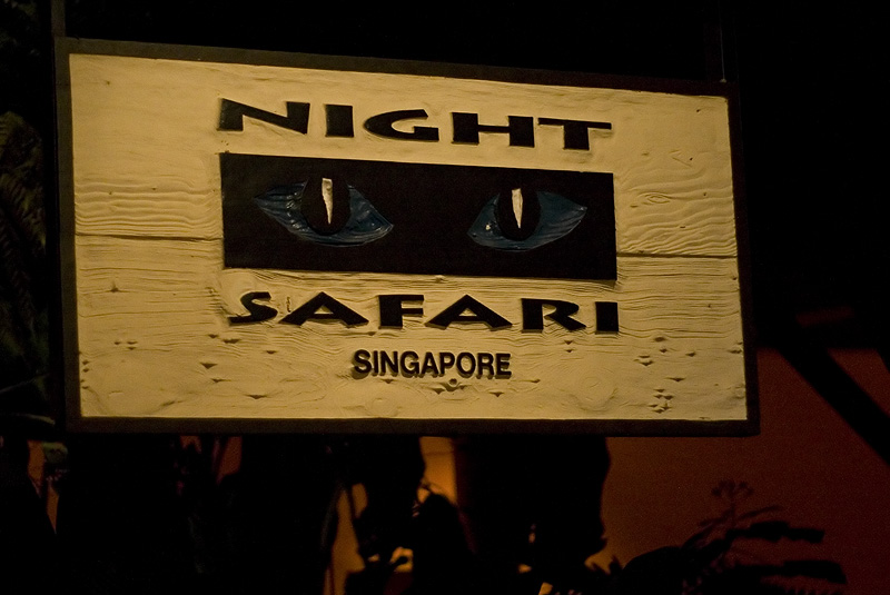 nightSafari01