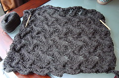 Meandering Vines shawl