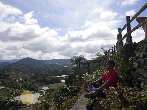 Breathing in the Morning Air at Cameron Highlands