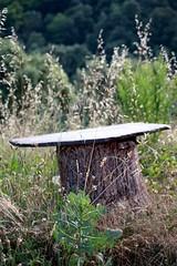 Bruscs ou bournios : une ruche tronc traditionnelle pour la récolte du miel en Cévennes #fb