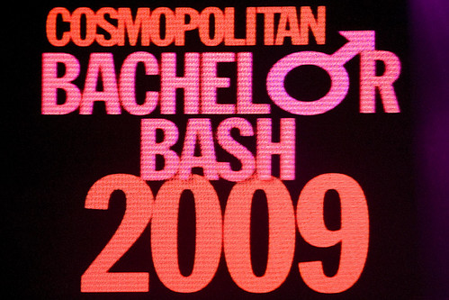 Bachelor party bash 2009 bisex party 4