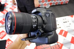 EOS7D with battery grip - EF 100mm 2.8 L macro hybrid IS with tripod collar (digitalmono) Tags: eos7d hybridis