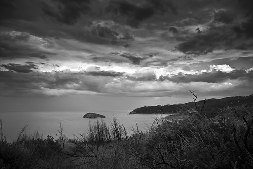 Isola di Campi (b&w)