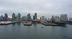 San Diego (forevertide) Tags: city skyline scenery sandiego sandiegoskyline