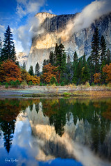head in the clouds ([Adam Baker]) Tags: morning autumn trees light reflection fall nature vertical clouds forest sunrise canon river landscape nationalpark merced foliage yosemite portfolio elcapitan 1740l featured photomatix adambaker adidap 5dmarkii exposurefusion