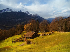 Beautiful day in Swiss Alps (ceca67) Tags: autumn trees alps nature beauty clouds switzerland day searchthebest mount harmony meiringen reuti impressedbeauty platinumheartaward tisexcellence ablackrose yourwonderland