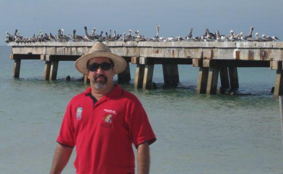 Muchos Pelicanos