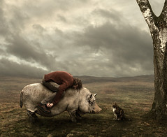 deceleration (Mattijn) Tags: surreal photomontage hog pino mattijn magicrealism deceleration