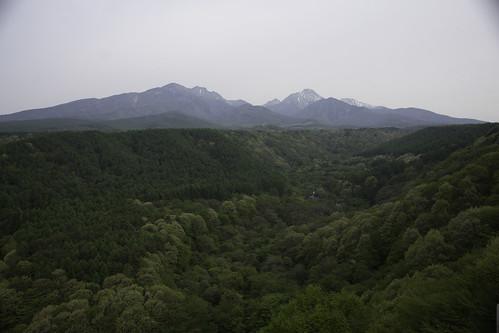 Takanechokawamata May 2011