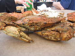 Advertising Tax Talk and Crab Feast Photos