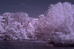Fountain Outside the Parthenon (edwin.donnelly) Tags: canon ir nashville canoneos20d parthenon infrared otw lifepixel canonef70200mmf4lisusm infraredconverted mycameraneverlies