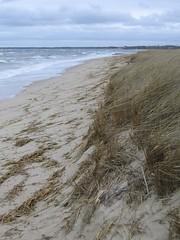 CrosbyBeach2 (randombeauty) Tags: bay capecod dunes crosbybeach