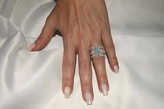 IMG_1162 (erikadefreitas) Tags: anillos